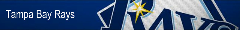 Tampa-Bay-Rays-Banner-tampa-bay-rays-16216417-800-100
