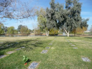 This Dual Cemetery plot is located directly under this huge tree, creating year round shade. Located between these 2-huge trees.